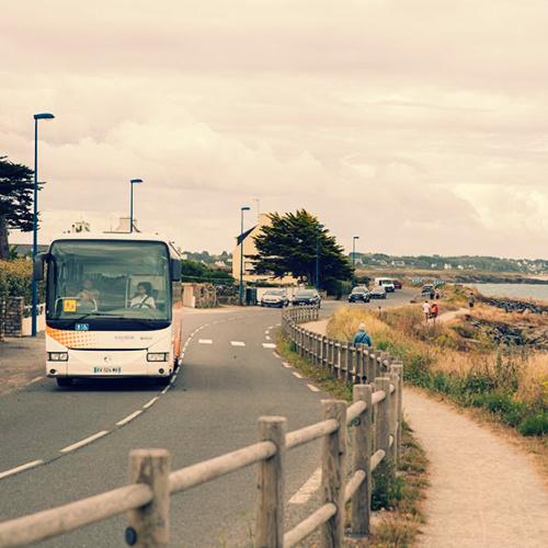 réseau de bus