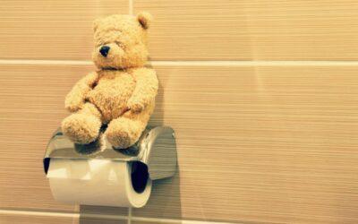 Des toilettes sèches à l'école : une idée folle ?